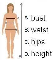 Size chart of swimwear for women