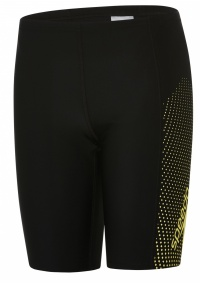 Speedo Gala Logo Panel Jammer Boy Black/Citron