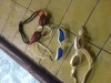 Testujeme plavecké brýle Speedo Aquapulse Max