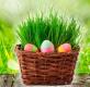 Otevírací doba o Velikonocích 2021